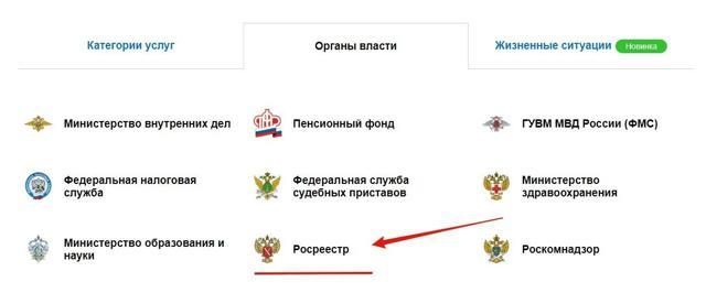 Как выглядит кадастровый паспорт на земельный участок