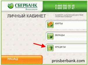 Как узнать задолженность по кредиту в Сбербанке: все способы проверить долг
