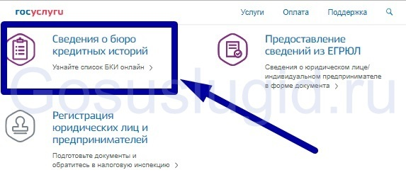 Проверить кредитную историю через Госуслуги бесплатно онлайн