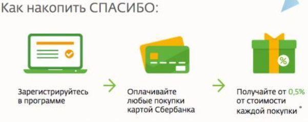 Сгорают ли бонусы Спасибо от Сбербанка, срок их действия